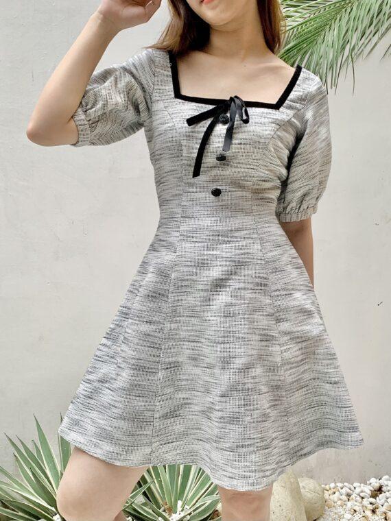 TS1DEN (3)